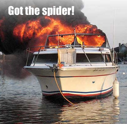The Buzz on Boat Bugs: Spiders